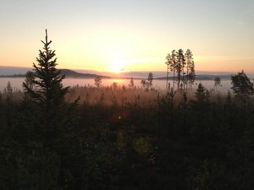 Har man inte ett rungande ståndskall att njuta av finns ju alltid den härliga naturen. Strålande morgon i september!