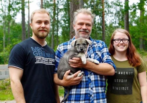 Castor har flyttat till familjen Larsson i Björna