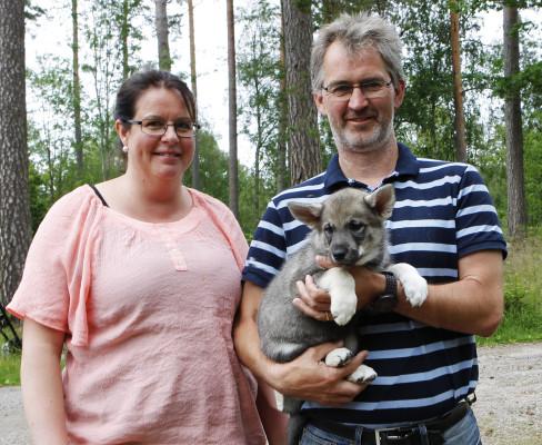 Celeste som var minstingen från början har växt till sig lika bra som de andra och bor nu i Säffle hos Mats och Annika.